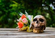 Skeleton Flower Stock Images