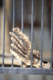 Skeleton Foot in Cage. Vertical image of a fake skeleton foot in a cage or prison stock photos