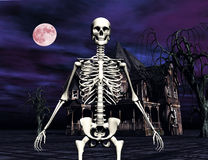 Skeleton in front of Haunted House Stock Image