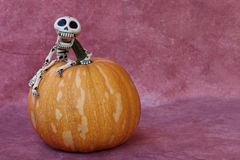 SKELETON FUNNY RISEN UP A PUMPKIN. Skeleton funny risen up a pumbkin with purple background horizontal Royalty Free Stock Photo