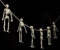 Skeleton Garland. Halloween decoration skeletons hanging from a rough string on pure black background royalty free stock image