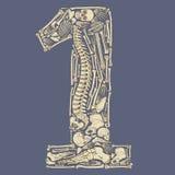 Skeleton geformtes Nummer Eins Stockfotografie