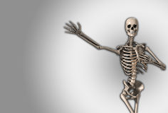 Skeleton Gesture Stock Photography
