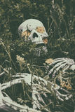 Skeleton in the Grass 4 Royalty Free Stock Images