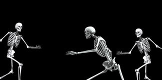 Skeleton Group 2. An x ray image of a group of skeletons. A suitable medical or Halloween based image Stock Images