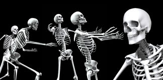 Skeleton Group 2. An x ray image of a group of skeletons. A suitable medical or Halloween based image Royalty Free Stock Images