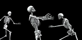 Skeleton Group 4. An x ray image of a group of skeletons. A suitable medical or Halloween based image Royalty Free Stock Images