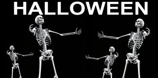 Skeleton Group Halloween 4 Royalty Free Stock Image