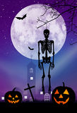 Skeleton of Halloweeen Stock Photos
