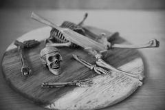 Skeleton Royalty Free Stock Photo