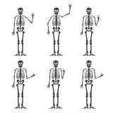 Skeleton hand gestures set: ok, finger up, finger down, fist, middle finger, Rock n roll horns, clapping palms and other. Skeleton hand gestures set:ok, finger Royalty Free Stock Images