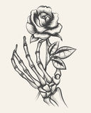 Skeleton hands with rose flower Royalty Free Stock Photography