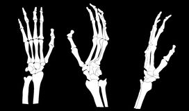 SKELETON HANDS Royalty Free Stock Photography