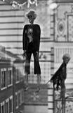 Skeleton Hängen Stockbilder