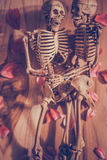 Skeleton holding hand for eternal love. Selective focus on hand Stock Photography