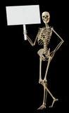 Skeleton holding sign stock photography