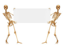 Skeleton holding a sign with both the hands Royalty Free Stock Image
