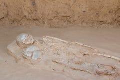 Skeleton human bones. Grave burial skeleton human bones Stock Image