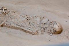 Skeleton human bones. Grave burial skeleton human bones Royalty Free Stock Photography