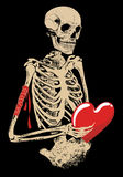 Skeleton. Human skeleton with love heart Stock Photos