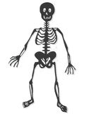 Skeleton vector Stock Image