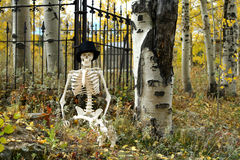 Skeleton and Iron Fence. A skeleton rests against an iron fence amid an autumn cemetery scene Stock Photos