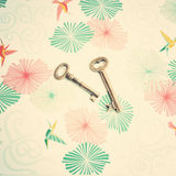 Skeleton Keys Royalty Free Stock Photos
