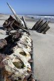 Skeleton Küste in Namibia Stockfoto
