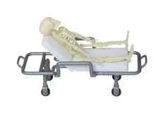 Skeleton Laying on a Gurney Royalty Free Stock Photo