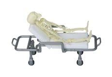 Skeleton Laying on a Gurney Royalty Free Stock Photo