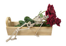 Skeleton Laying In A Wooden Box With Roses Royalty Free Stock Photography