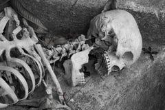 Skeleton lying in   Halloween Royalty Free Stock Image