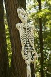 Skeleton mask Stock Photography