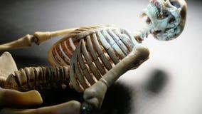 Skeleton Mini Model. Miniature Human Skeleton Model Close Up stock video