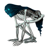 Skeleton monster with veil on skull Royalty Free Stock Photography
