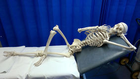 Skeleton. A nail biting experience for a patient at hospital laying on a bed waiting to be seen stock photo