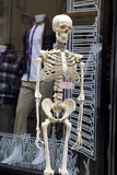 Skeleton near shop Stock Photos