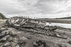 Skeleton. This old shrimping boat has been left to rot with the ebbing tides from day to day, now it has started to fall apart Stock Photo