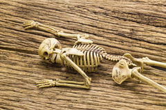 Skeleton on old wooden background Royalty Free Stock Photos