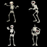 Skeleton Pack Stock Photos