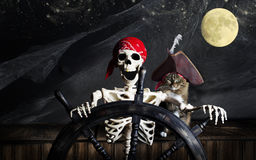 Skeleton Pirate and Cat. A pirate skeleton with gold tooth and wearing red bandana at ships wheel while cat in tricorn hat sits at his side. There is a full moon Stock Images