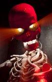 Skeleton Portrait Stock Photos