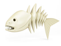 Skeleton of predator fish Royalty Free Stock Photo