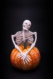 Skeleton and pumpkin Royalty Free Stock Image