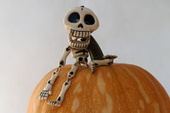 SKELETON AND PUMPKIN HALLOWEEN. On white background Royalty Free Stock Photos