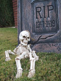 Skeleton Resting in Peace Royalty Free Stock Image
