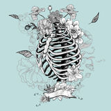 Skeleton Ribs and Flowers, Vector illustration Stock Images