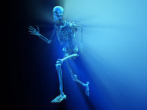 Skeleton running Royalty Free Stock Photos