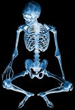 Skeleton seated xray Royalty Free Stock Photos
