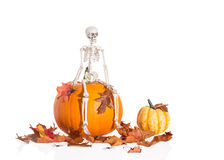 Skeleton Sitting On Pumpkin Stock Image